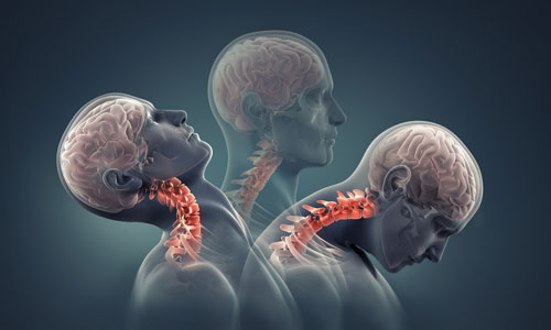 Segmentale Beweglichkeitsdiagnostik